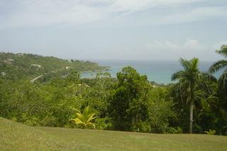 Jamaica2008 099